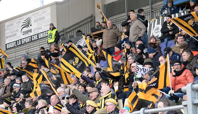 Wasps seeking European glory